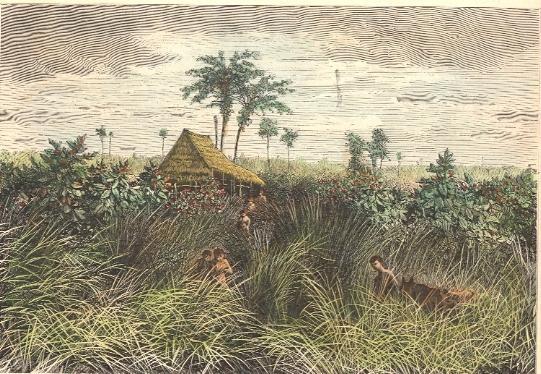 SUMATRA : ROYAUME DE DELI, Asia, old print, engraving, plate