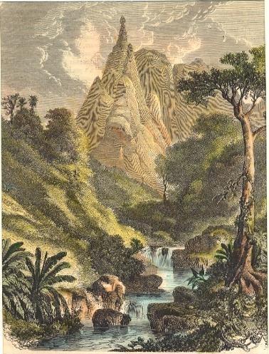 ISLAND MAURICE : ile de France, engraving, old print, plate, Afr