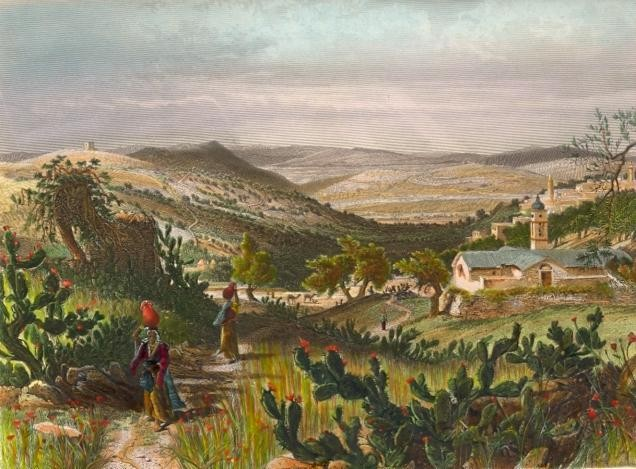 VALLÉE DE NAZARETH, Israel, palestina, palestinia, middle east,