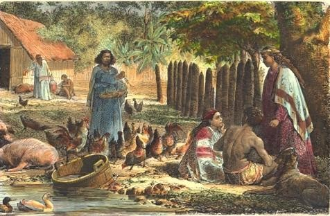 TAÏTI : Case indigène, Taïhiti, Polynesia, Oceania, engraving, p
