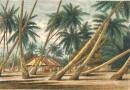 TUAMOTOU ISLANDS : Oceania, Polynesia, Tuamotu, engraving, print