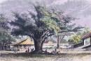 BALI - vue prise devant le palais du sultan de BOELELANG